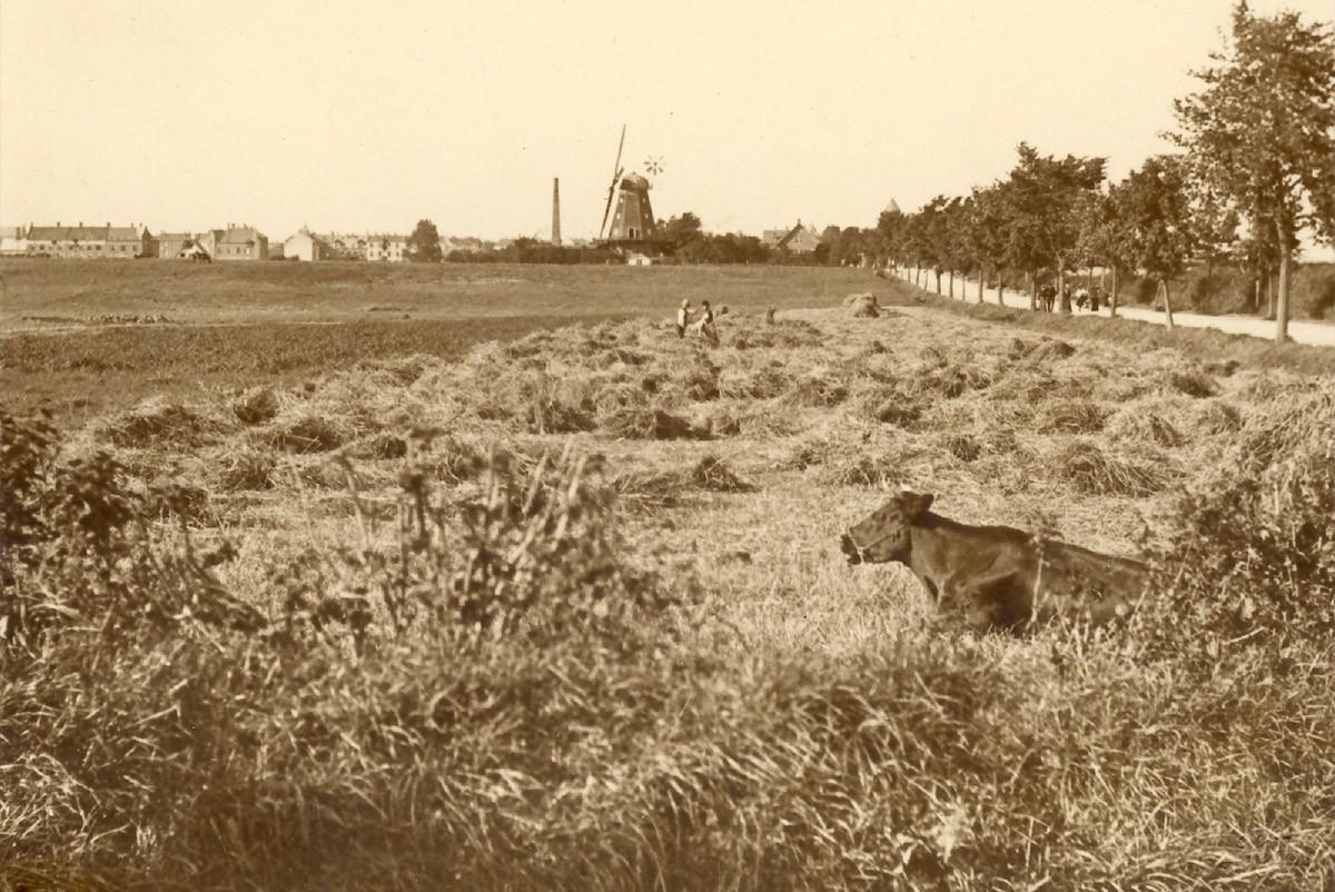 1800-tallet