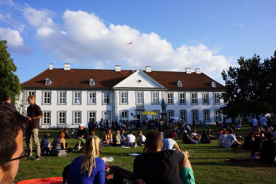 Synopsis-Slottet-Odense